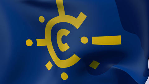 Flag of Central European Free Trade Agreement Stock Video Footage