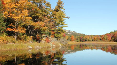 Pond and autumn trees reflecting on calm water Stock Video Footage