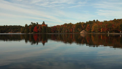 Calm lake and autumn forest Stock Video Footage