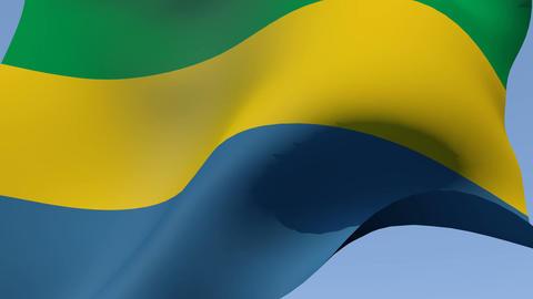 Flag of Gabon Stock Video Footage