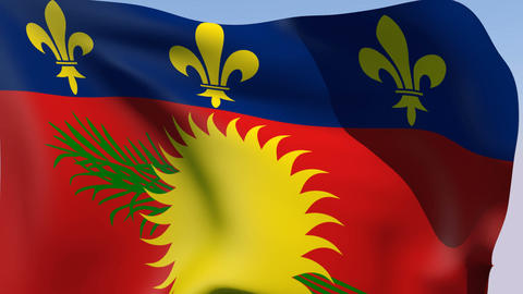 Flag of Guadeloupe (unofficial variant) Stock Video Footage