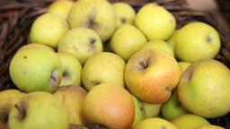 Basket Of Apples, Slider Shot stock footage