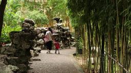 Family Walking In A Garden In Macau stock footage