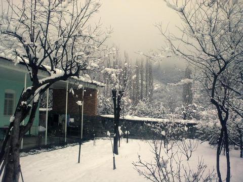 Snow 2 00000 Fotografía