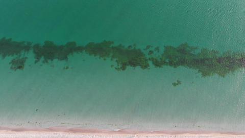 Sea & Oceans 1