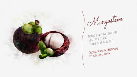 Useful properties of Mangosteen Animation