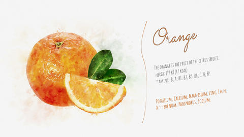 Orange and its beneficial properties Animation