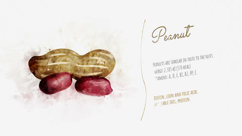 Animated card of Peanut with a list of its useful properties Animation