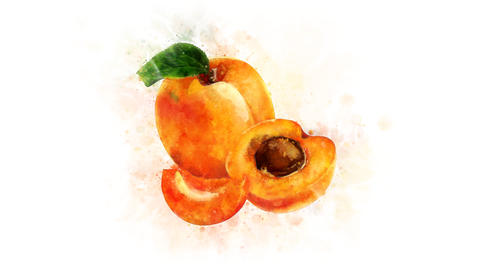 Apricot, set for video editing Animation