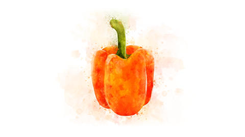Orange bell pepper set for video editing Animation