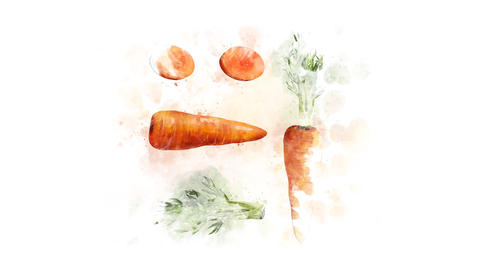 Decoration for a video about Carrots Animation
