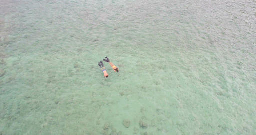 Couple snorkeling in the sea 4k Live Action