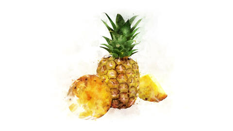 Pineapple painted in watercolor Animation