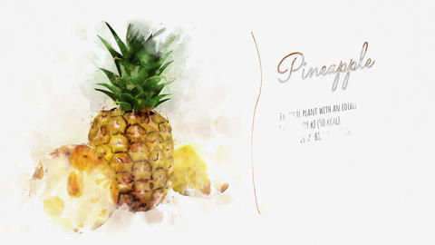 Brief information about Pineapple Stock Video Footage