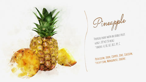 Brief information about Pineapple Animation