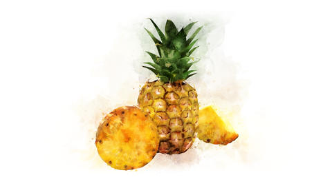 A set of Pineapple animations Animation