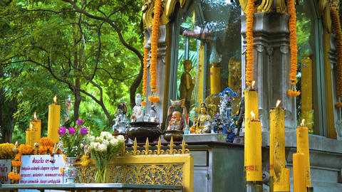 temple buddha under the trees. Buddhism in Asia. candles and flowers. place of GIF