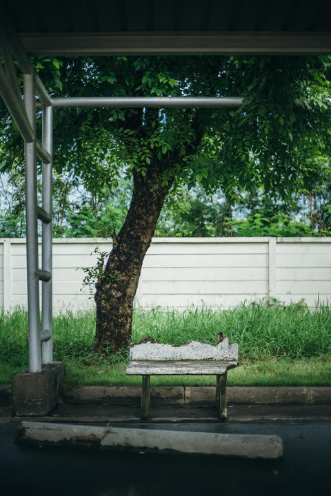 Broken stone bench with metal lamp post and big green tree and w Fotografía