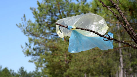 Empty plastic bags caught on a branch in the forest Footage