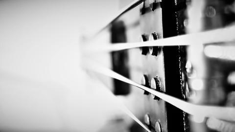 Bass guitar player Footage