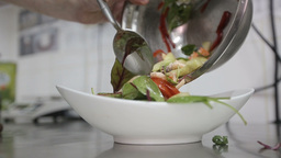 chef cooking a vegetable salad with seafood. Close-up of chef hands cooking and  Footage