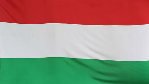 Moving fabric Hungary flag Live Action
