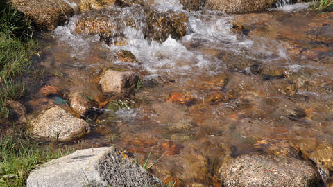 Clear water flow, rocky river closeup. Flowing water of creek in mountain valley Footage