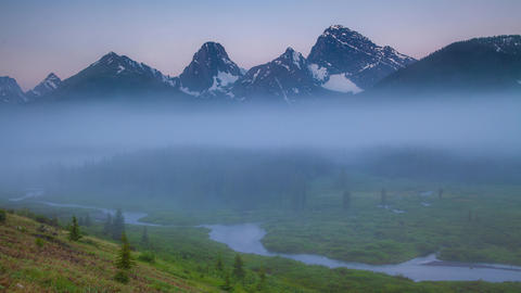 A foggy sunrise over a mountain Meadow in the Canadian Rocky mountains in Live Action
