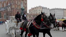 Horse cab on the street of Krakow, Poland Footage