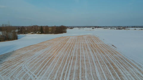 winter wheat stubble field with snow, aerial view Footage