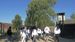 People at the guided tour near the Auschwitz Main Gate Footage