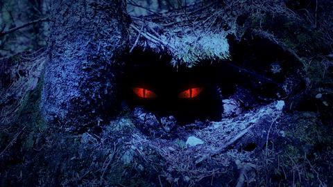 Fairy-tale view of the eyes hidden in a forestry hole Animation