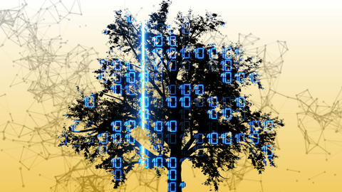 Mixed media of two 3d animation from tree and binary code Animation