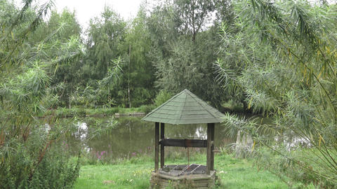 Old well by the pond. Pond in the garden. Branches of willow near lake Footage