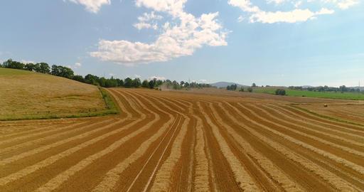Freshly harvested wheat field 4K Footage
