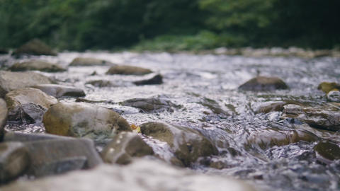Clean water flowing in stony river close up. Stream of water in mountain river Live Action
