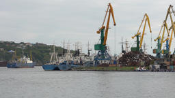 Port cranes operate on pier, ships sail in sea and stand at anchor at pier Footage