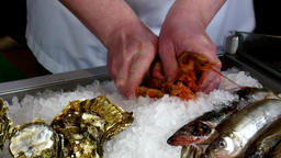 Hands of the cook superimpose fresh oysters on ice in a seafood restaurant Footage