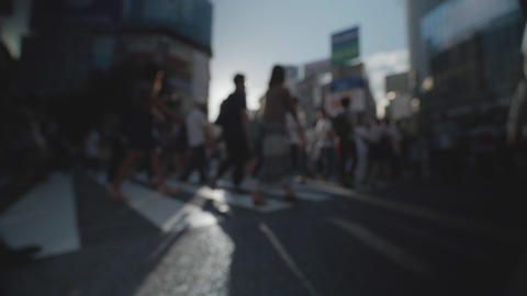Soft Focus - People walking at the scramble intersection (Summer in shibuya) ライブ動画