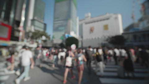 Soft Focus - People walking at the scramble intersection (Double speed) ビデオ