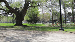 Park panoramic view with parents and bicyclists going down a path away from Footage