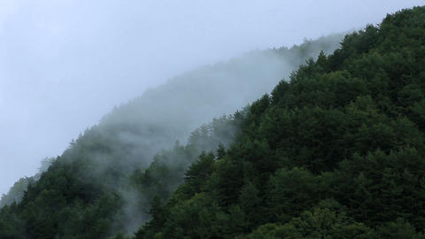 Fog moving in mountains. Central Alps, Nagano Prefecture, Japan. Time Lapse ライブ動画