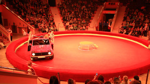 Animal trainers and trained bear driving car on arena in circus 영상물