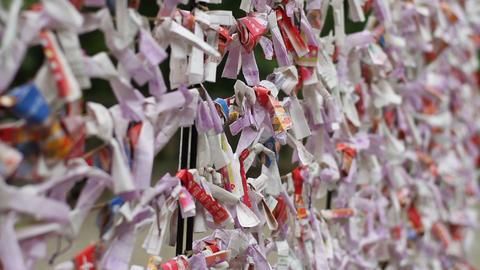 Fortune slips at Hodosan shrine in Saitama close shot shallow focus Footage