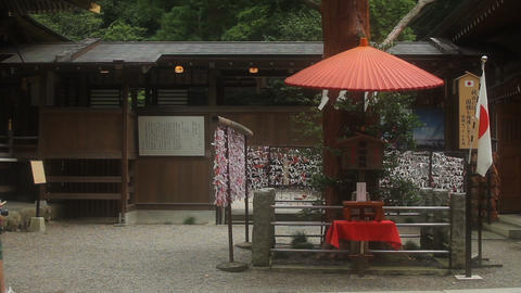 Fortune slips at Hodosan shrine in Saitama wide shot right position Footage