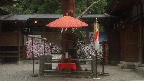 Fortune slips at Hodosan shrine in Saitama wide shot ビデオ
