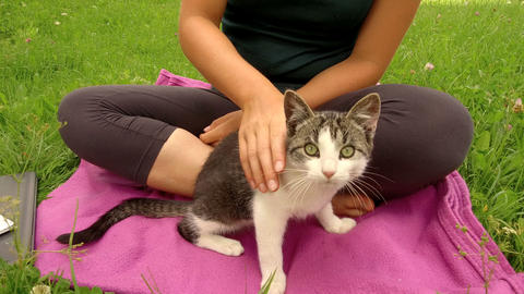 blonde girl caresses a kitten in the middle of a green lawn Footage