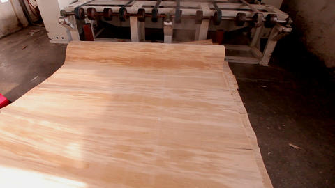 Production of plywood in a furniture factory. Worker in…, Live Action