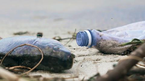 Contaminated seashore, environmental disaster, human footprint on the planet Footage