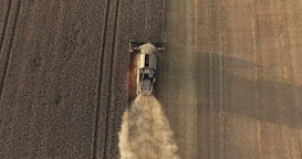 Combine Harevester Reaping Overhead Live Action